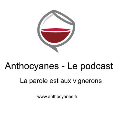 Michael Paetzold invité du podcast Anthocyanes pour parler du Wineglobe