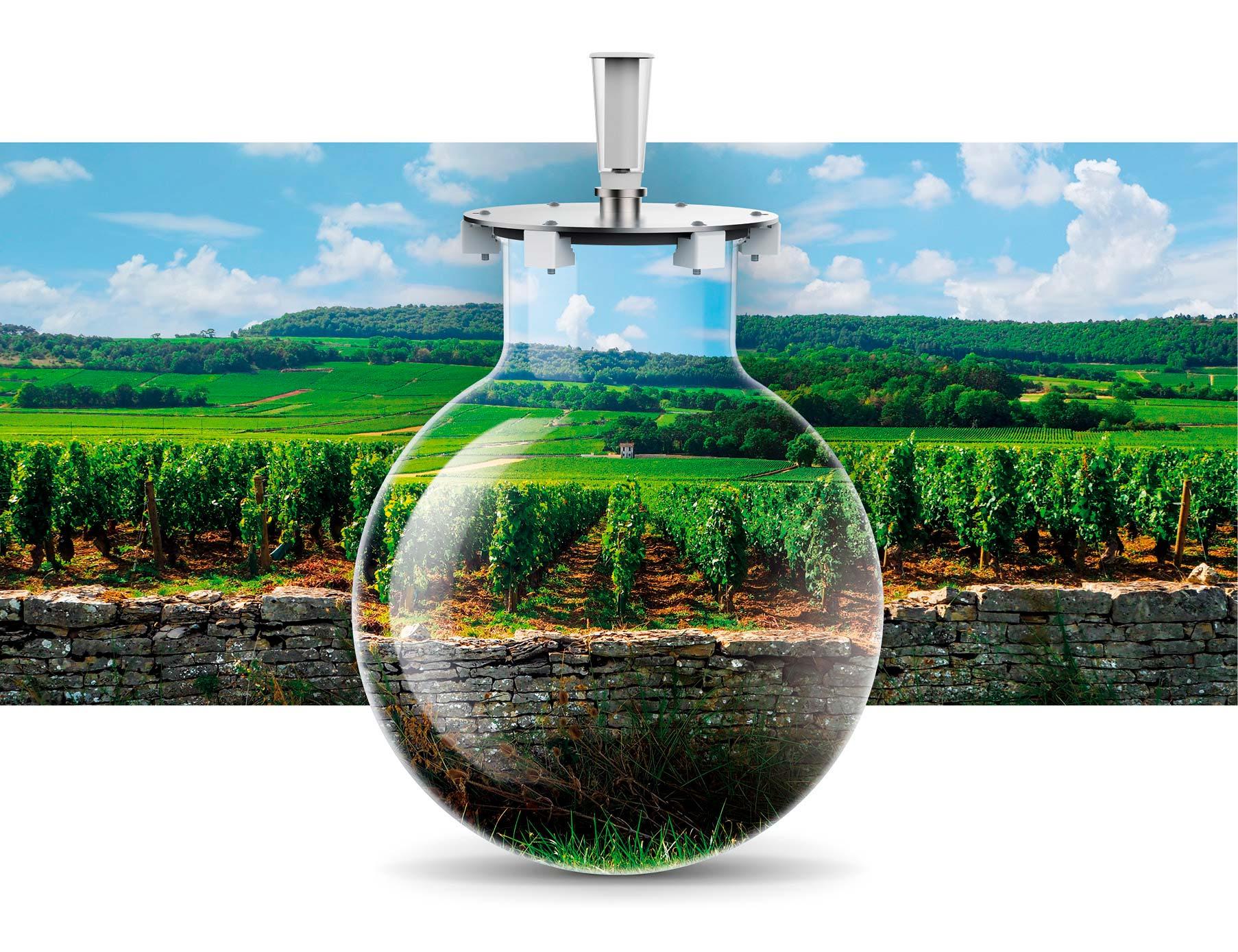 Wineglobe, la verité du terroir dans notre cuve en verre